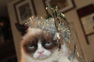 Cuidando do seu pet na ceia de Natal e Ano Novo 1