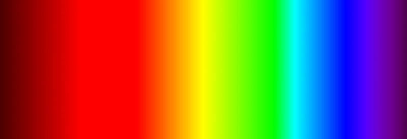 Como os cachorros enxergam? As cores, no escuro, o mundo 1