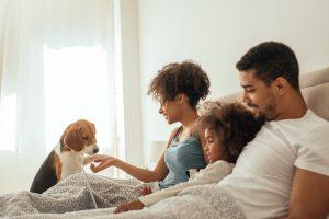 10 raças de cachorro ideais para famílias com crianças 15