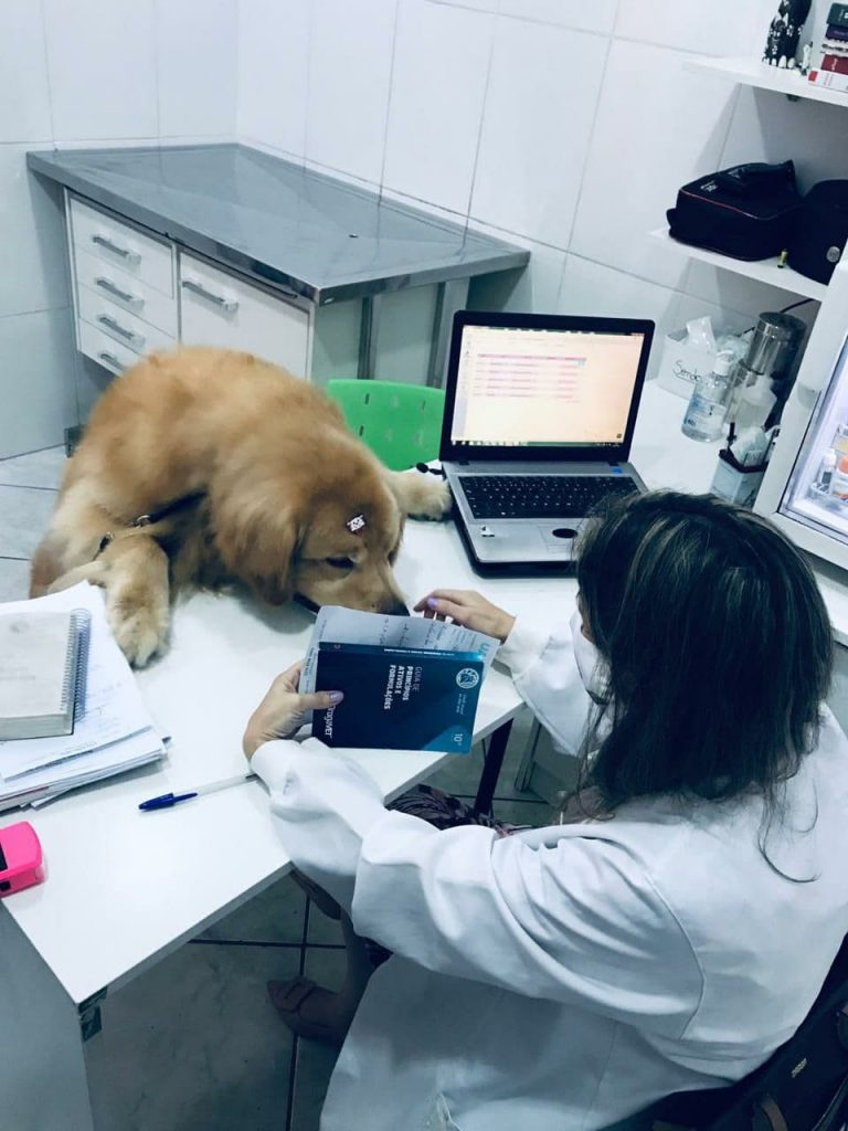 Veterinária Keila Renata Ortêncio (CRMV-SP 14352) 6