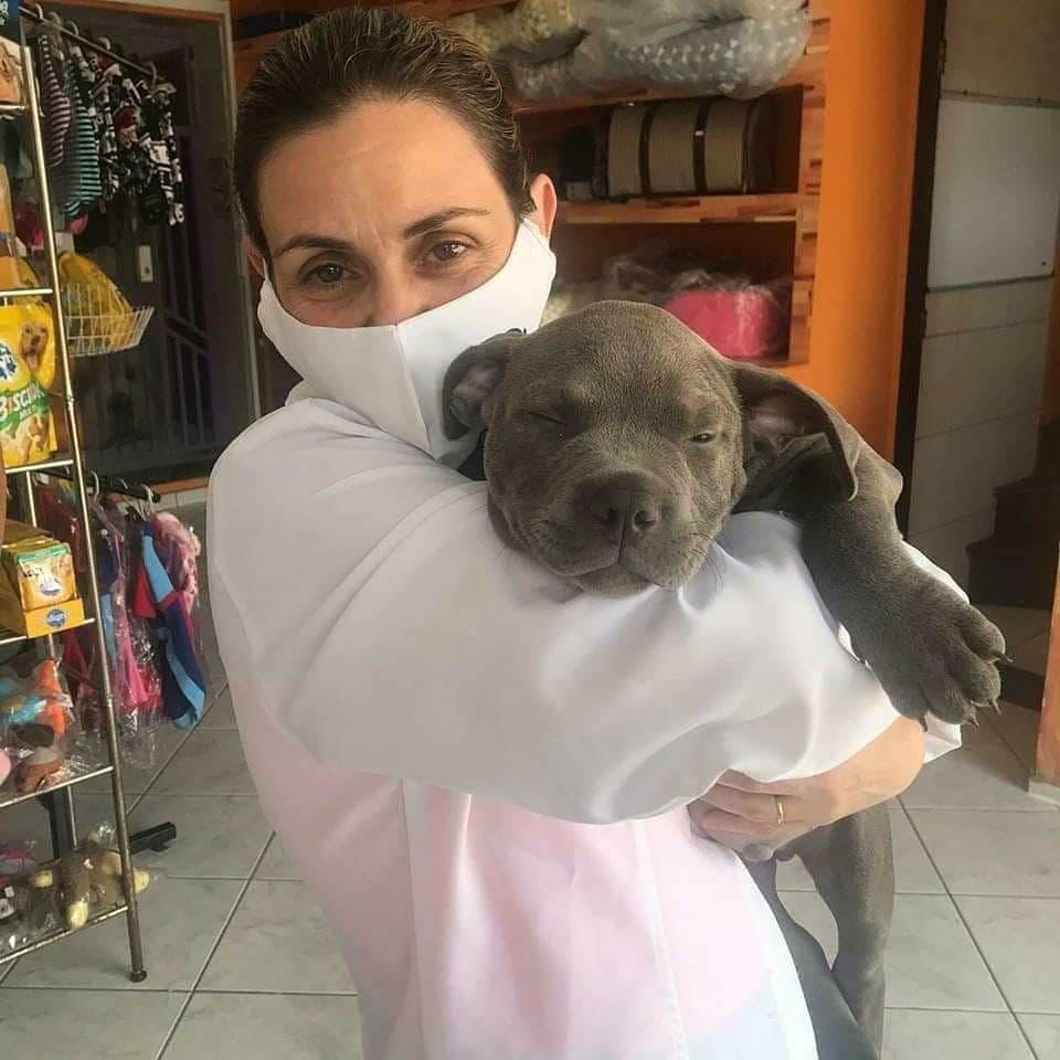 Veterinária Keila Renata Ortêncio (CRMV-SP 14352) 10