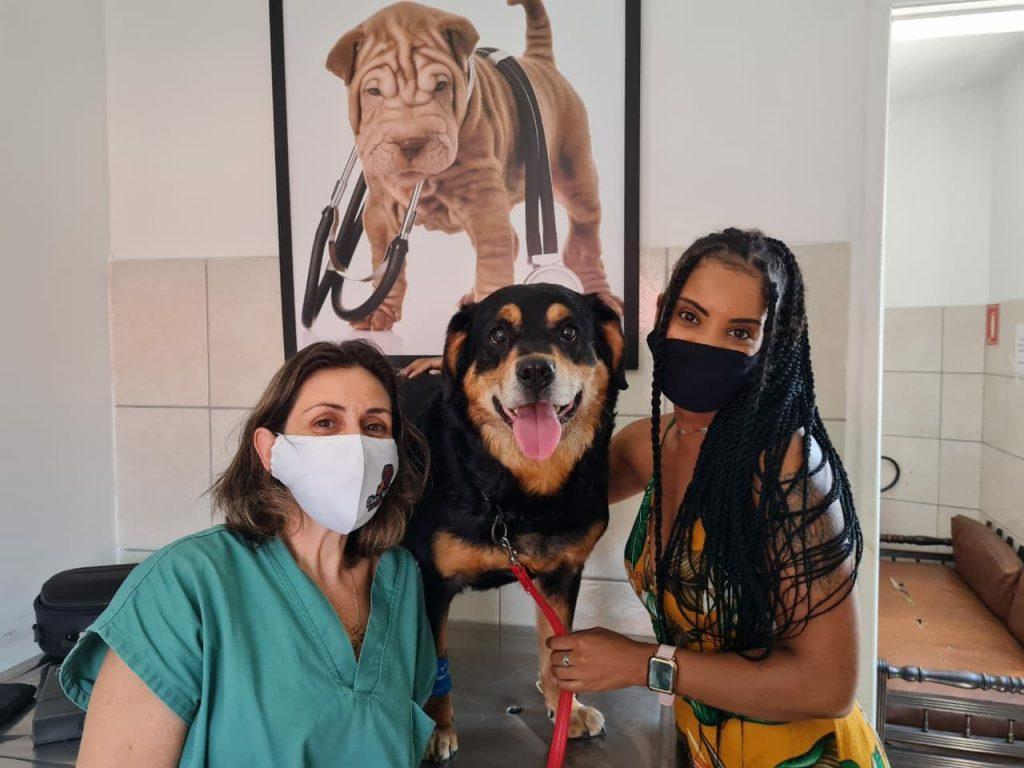 Veterinária Keila Renata Ortêncio (CRMV-SP 14352) 13