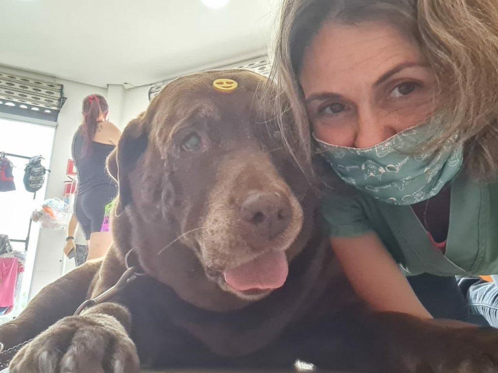 Veterinária Keila Renata Ortêncio (CRMV-SP 14352) 8