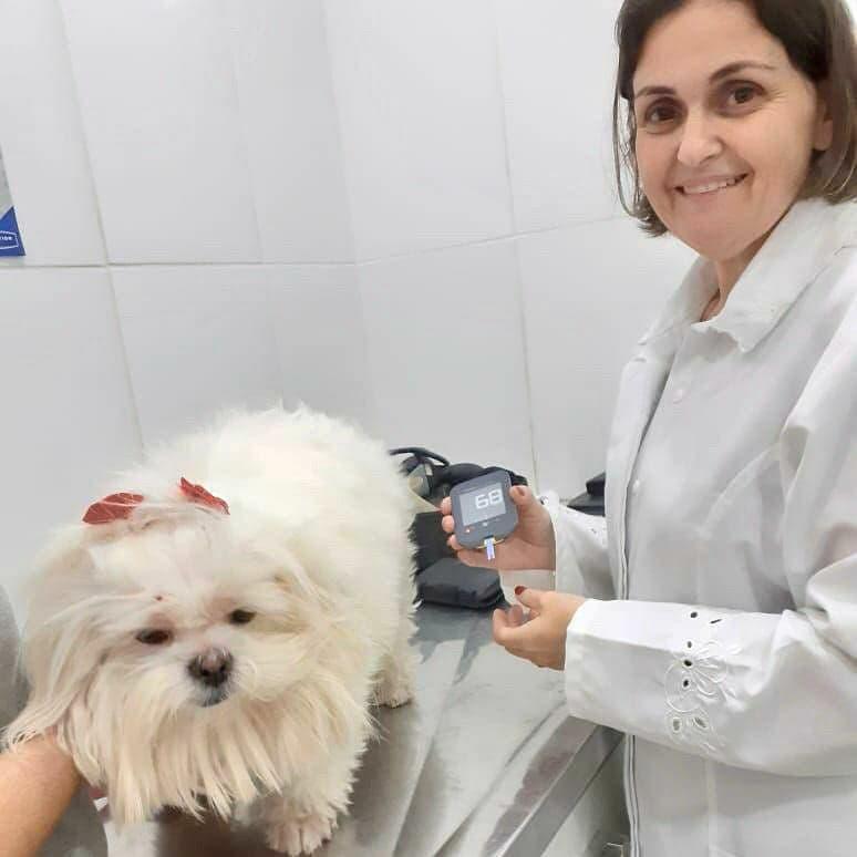Veterinária Keila Renata Ortêncio (CRMV-SP 14352) 1
