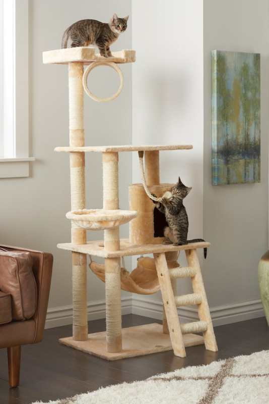 Como escolher e usar um poste para gato arranhar 5