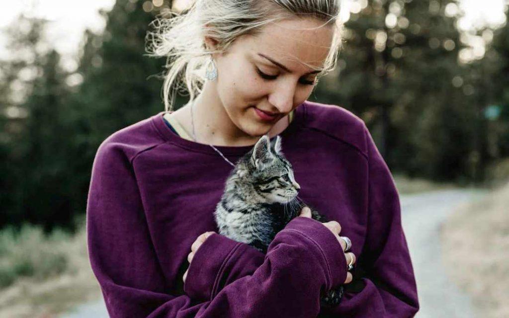 Tudo o que você precisa saber antes de comprar ou adotar um gato 4